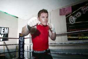 Saul Alvarez Boxer Wallpapers