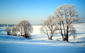 Lovely view of Winter Nature Wallpaper